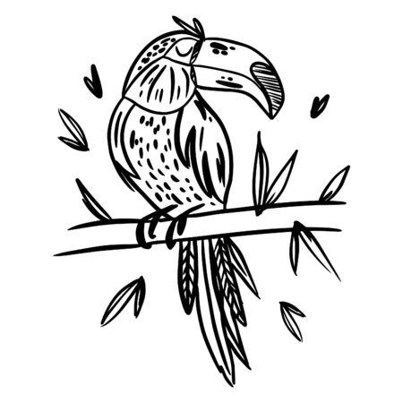 Toucan. Des oiseaux. Doodle dessiné main blanc noir. Illustration vectorielle à motifs ethniques.