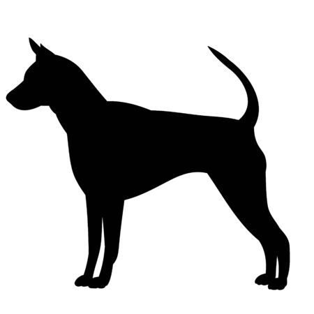 white background, black silhouette of a dog 向量圖像