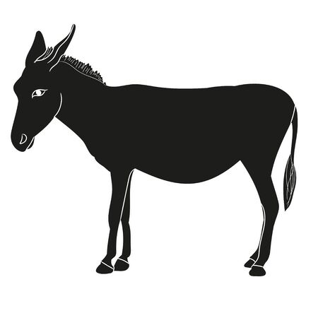 vector, isolated silhouette of a donkey Vetores