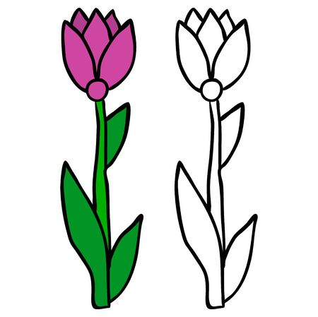 isolated flower, coloring book