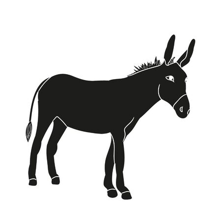 isolated silhouette of a donkey