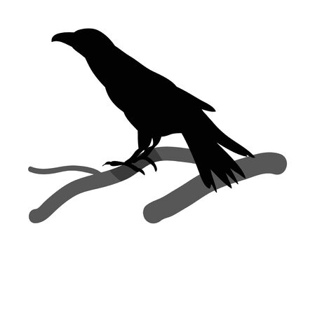 silhouette of a bird, ravens Illustration