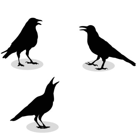 vector, silhouette of a raven, Vetores