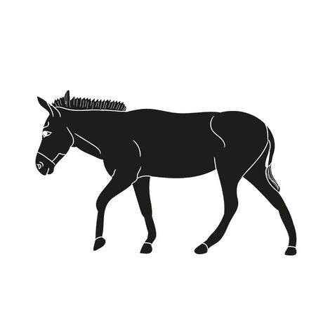 vector, isolated silhouette of the donkeys