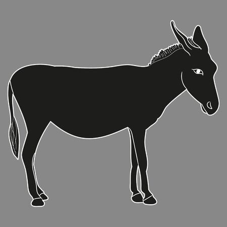 isolated, silhouette of a donkey on a gray background
