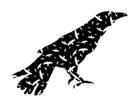 vector, silhouette of crows, birds