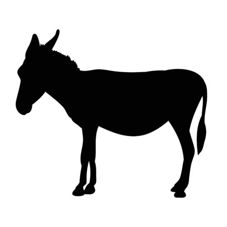 silhouette of a donkey, it is worth