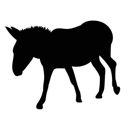 isolated black silhouette of a donkey