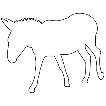 vector, isolated contour of donkeys, sketch, is