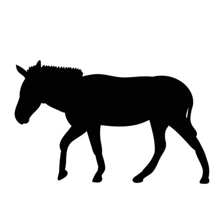 vector, isolated black silhouette of a donkey, is going Vettoriali