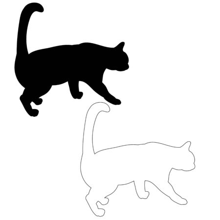 silhouette of a cat, is going