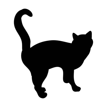 isolated, black silhouette of a cat is standing