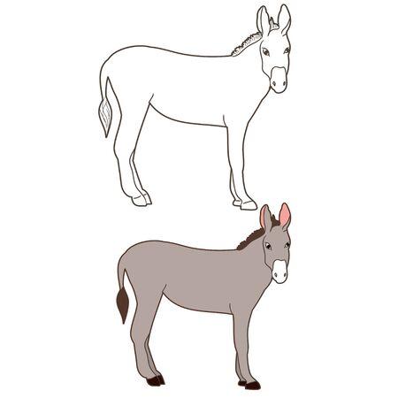 vector isolated donkey donkey, worth Ilustração