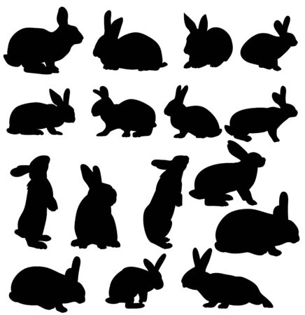 vector, isolated silhouettes of rabbits