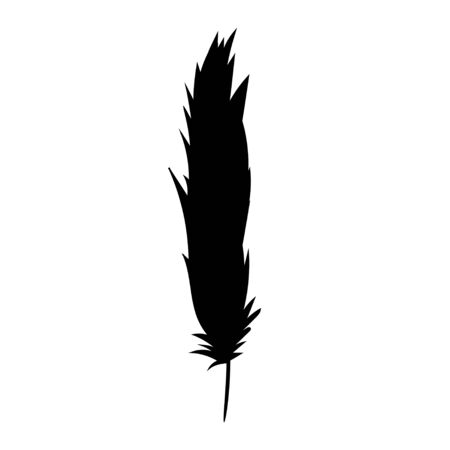 vector, isolated black silhouette of a feather