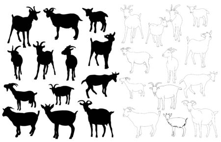 isolated set of goat silhouettes, outline of goat