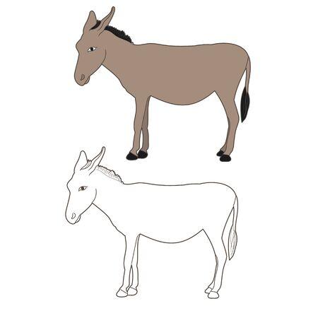 isolated donkey, mule, outline Ilustração