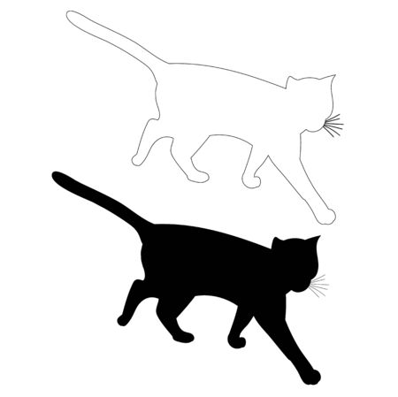 vector, isolated silhouette cat, outline is on