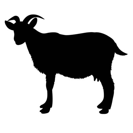 vector, isolated silhouette of goat on white background Vector Illustratie
