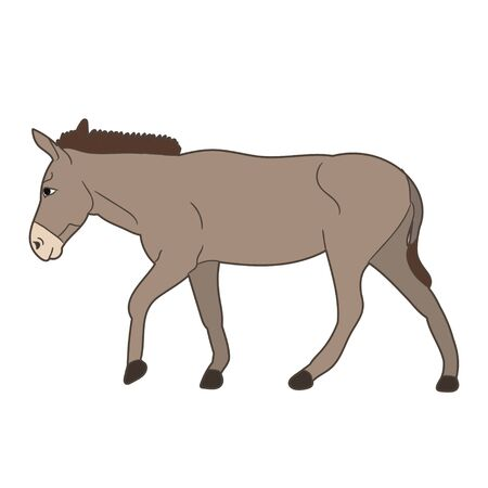 donkey gray goes vector Ilustração