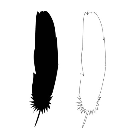 isolated black silhouette bird feather, outline
