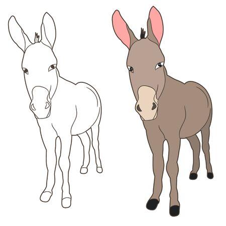 vector isolated donkey, mule, outline Ilustração