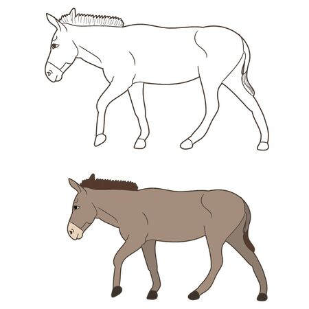 isolated donkey drawing, going,