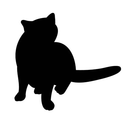 isolated silhouette cat