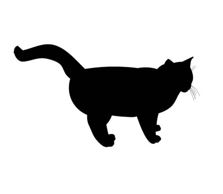 vector, isolated black silhouette cat