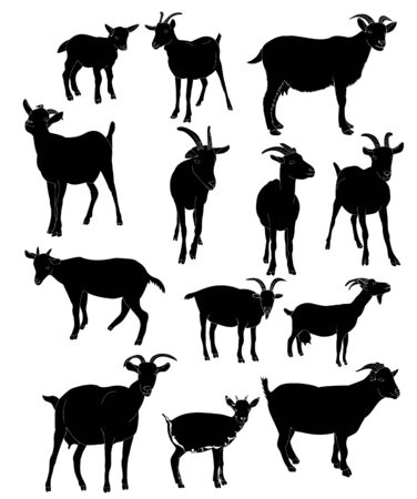 silhouette goat with horns set