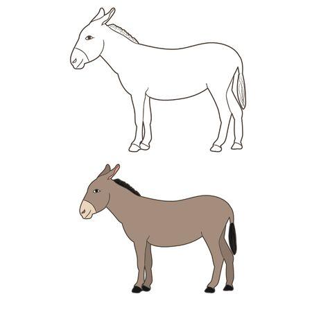 isolated donkey drawing vector Ilustração