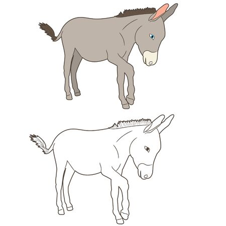 donkey drawing, going, vector