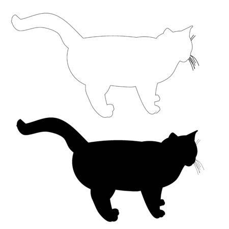 vector, isolated silhouette cat, outline, is