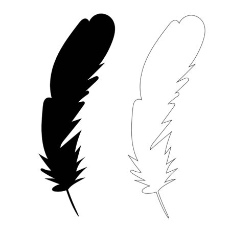 silhouette of bird feather