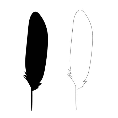 isolated silhouette feather bird