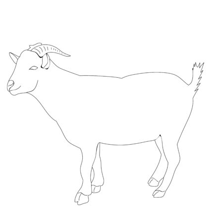 isolated goat sketch Vectores
