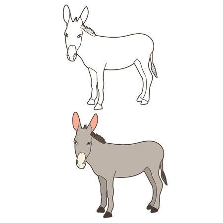 isolated donkey donkey, worth