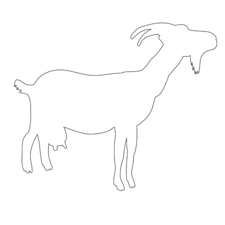 vector, isolated goat outline on white background