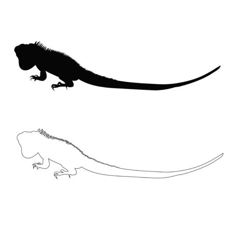 vector, isolated silhouette of the lizard Vectores