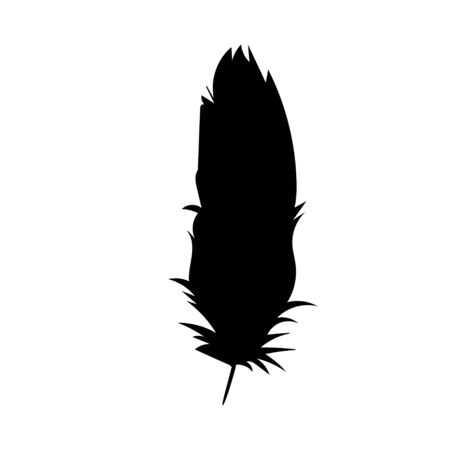 isolated silhouette of the feather, beautiful Vettoriali