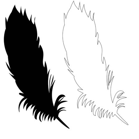 silhouette of bird feather, outline Vettoriali