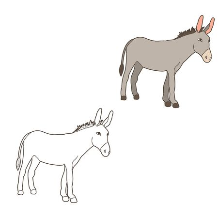 donkey, mule, outline vector Vectores