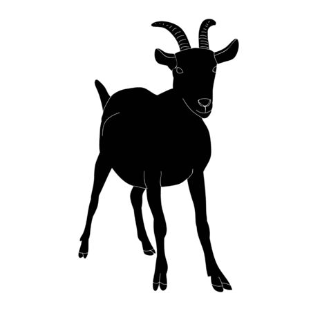 vector, isolated black silhouette goat with horns standing
