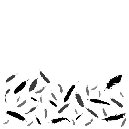 background with silhouette of bird feather