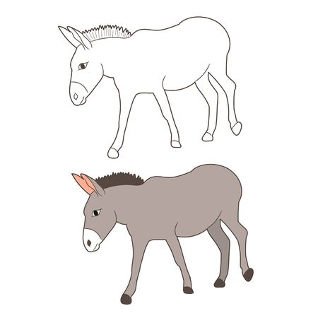 vector isolated donkey drawing, going,