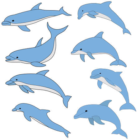 vector, isolated, blue dolphin swims set