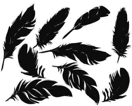 feathers silhouettes set