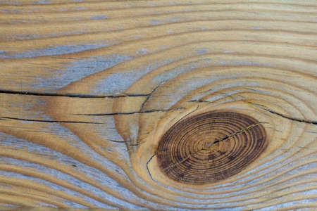 Wood texture with a knot. Pine. Background in provence style. Tree structure knot wood board pattern. Natural material. Vintage wood.