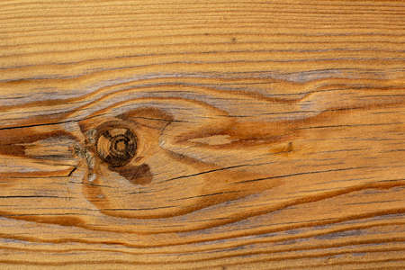 Wood texture with knot. Pine surface.