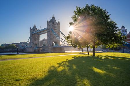 Zonsopgang bij de Tower Bridge met boom en groen gras, Londen, UK Stockfoto